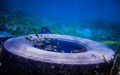 Marine Dumping & Water Pollution